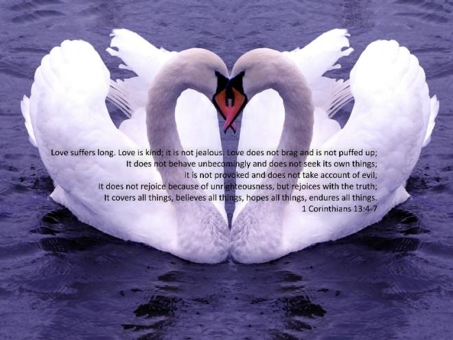 1 corinthians 13_4-7