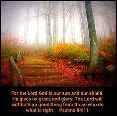 Psalm 84_11
