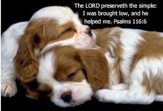 psalms 116_6