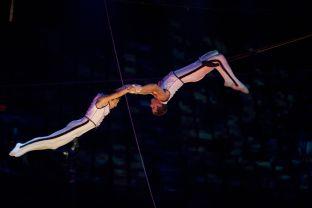 Trapeze Artists.jpg