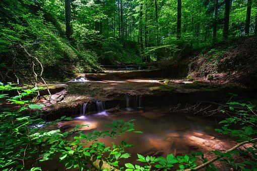 stream outdoors
