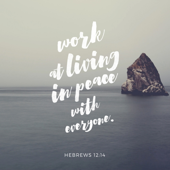 Hebrews 12_14