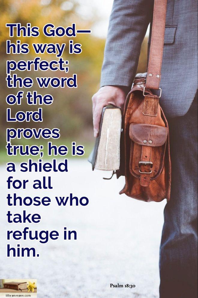 Psalm 18_30