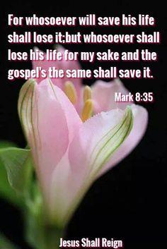 Mark 8_35
