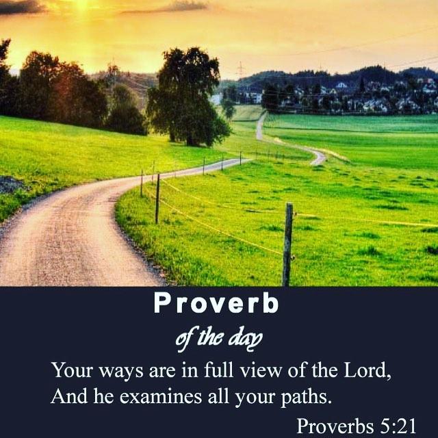 Proverbs 5_21