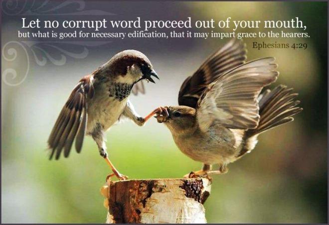 Ephesians 4,29