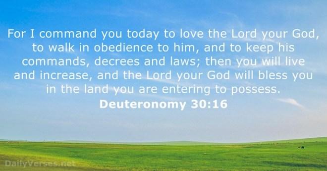 Deuteronomy 30_16