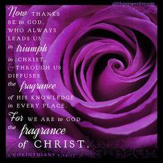 2 Corinthians 2_14-15