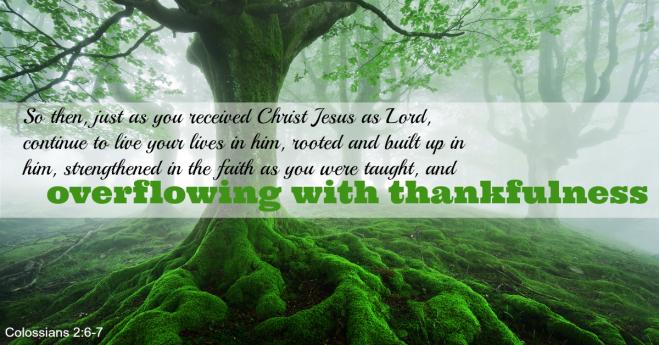 Colossians 2_6-7