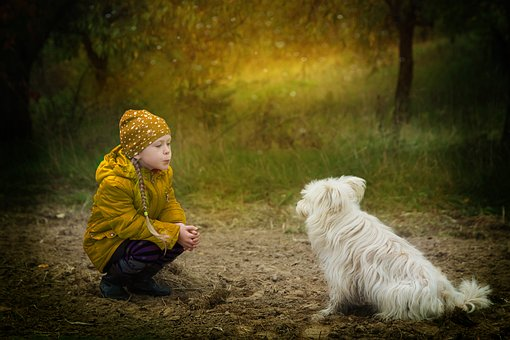Little girl and a dog
