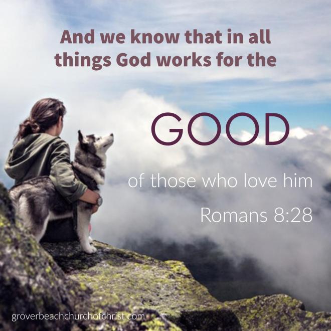 Romans 8_-_28