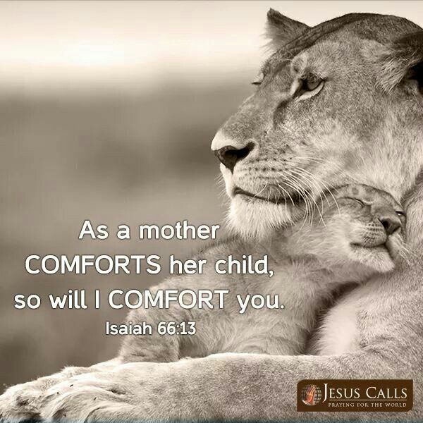 Isaiah 66_13