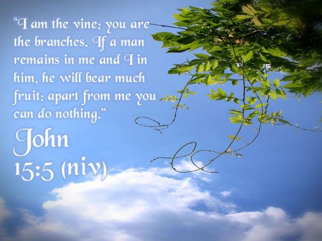 John 15-5