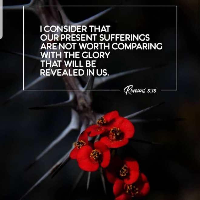 Romans 8-18