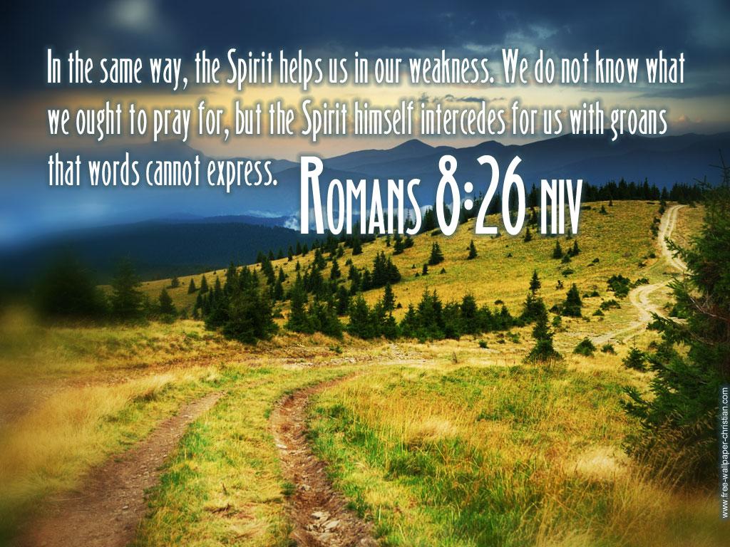 Romans 8_26