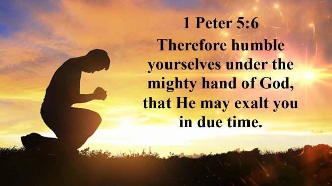 1 Peter 5-6