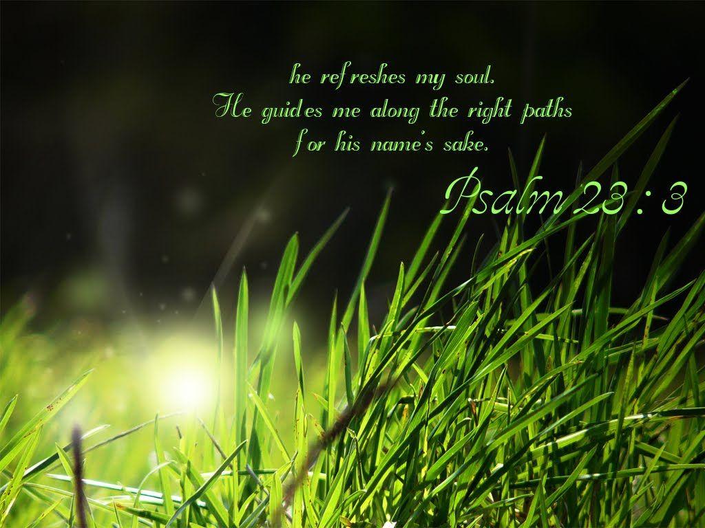 Psalm 23-3
