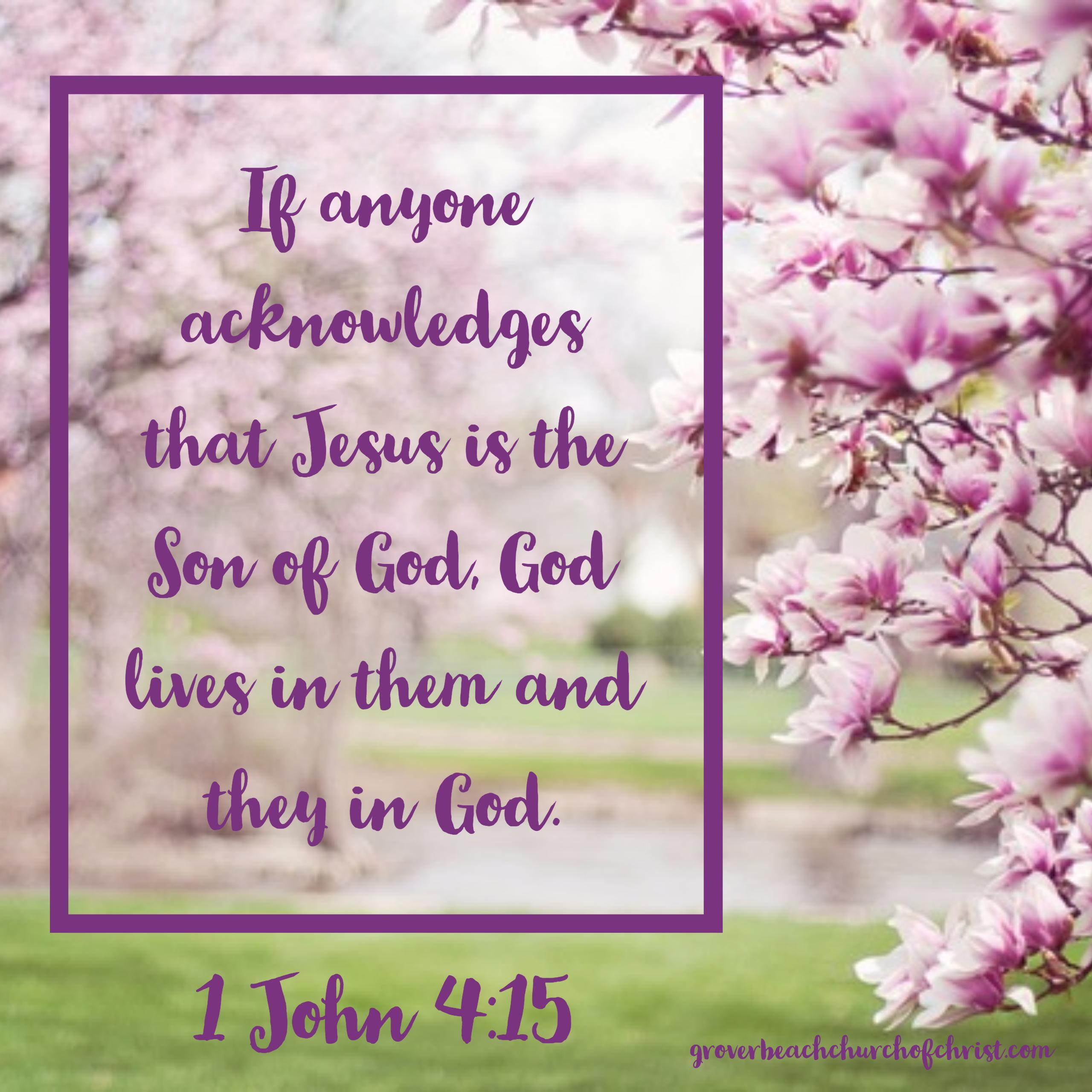 1 John 4-15
