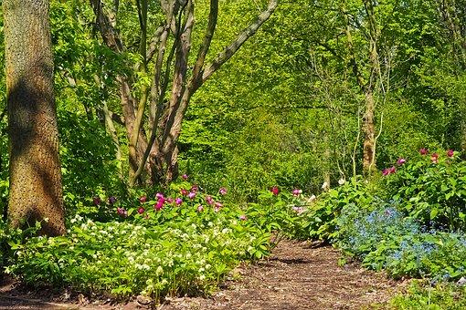 Florishing garden