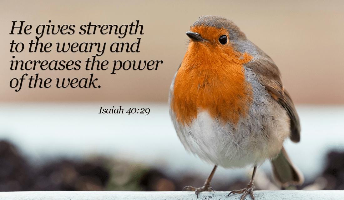 Isaiah 40-29