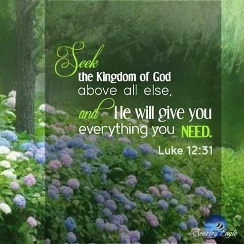 Luke 12_31