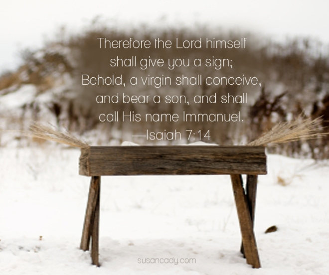 Isaiah 7-14