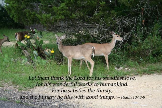 Psalm 107-8_9