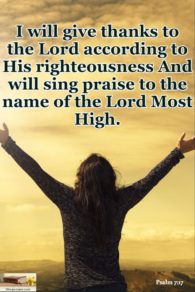 Psalm 7-17