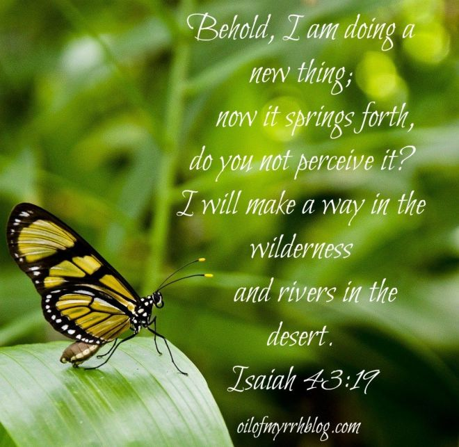 Isaiah 43-19