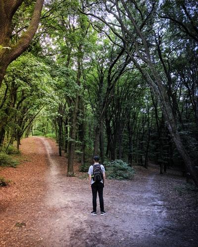 Man at two paths
