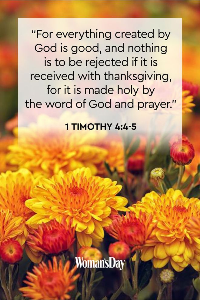 1 Timothy 4+4-5