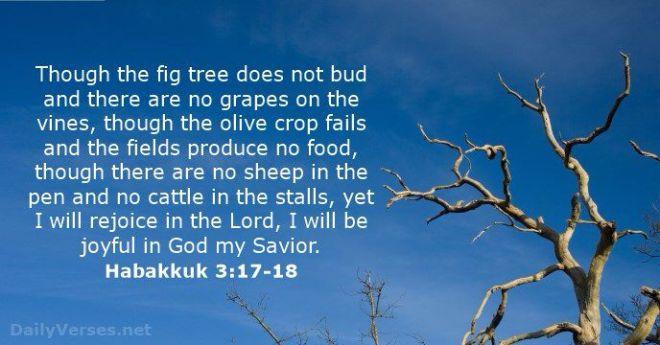 Habakkuk 3_17+18