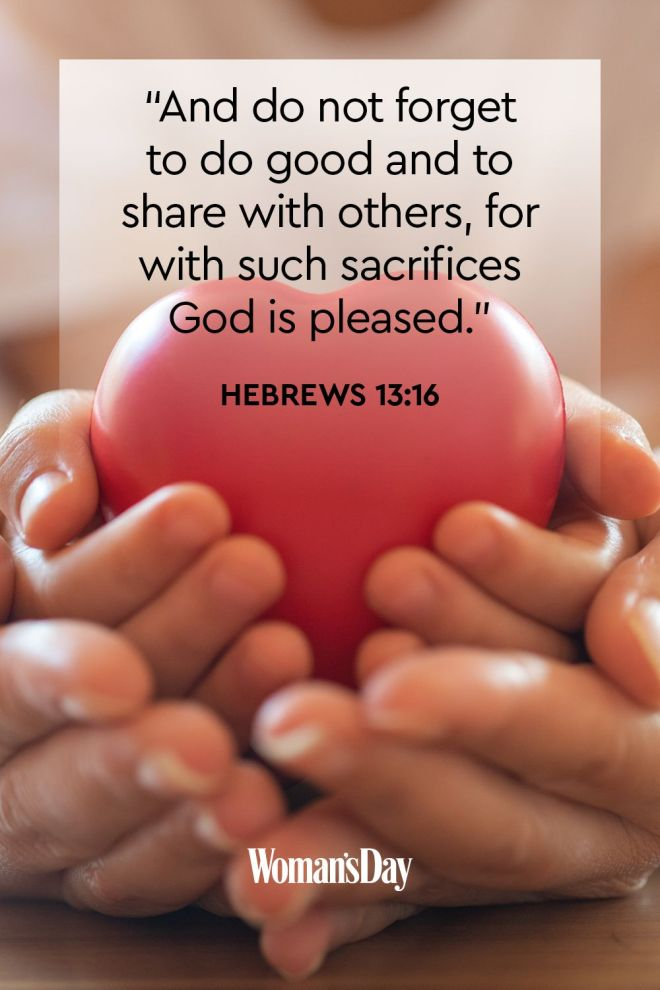 Hebrews 13_6