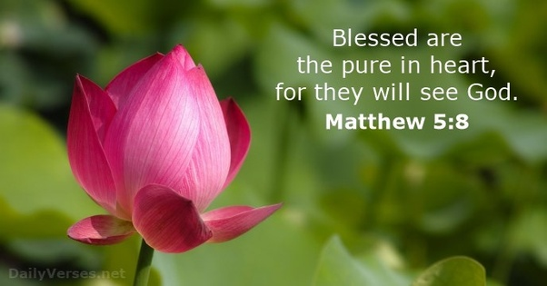 Matthew 5-8