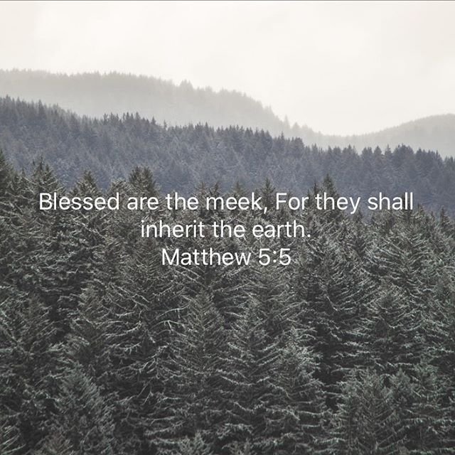 Matthew 5_5