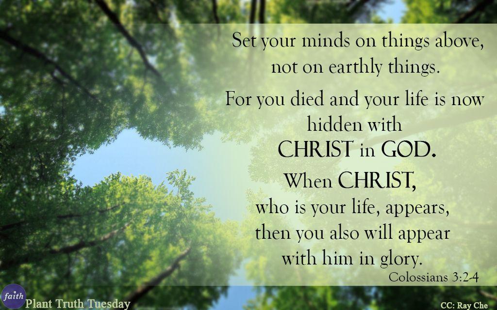 Colossians 3_2-4