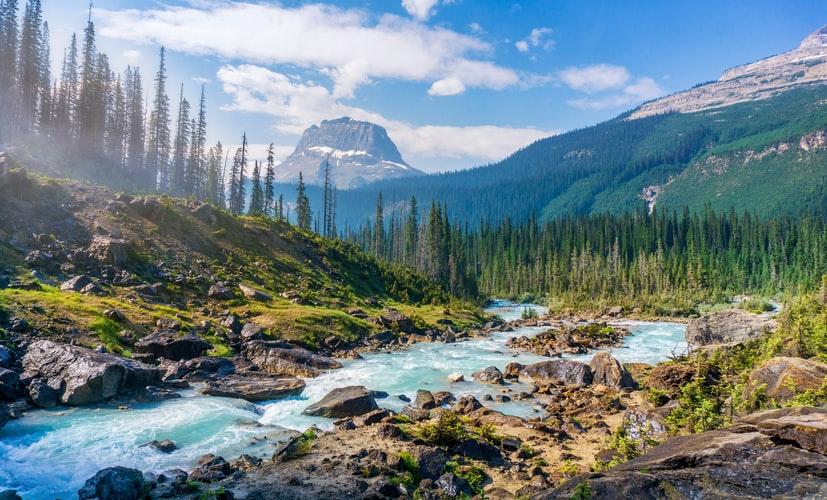 Stream among mountains