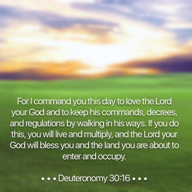 Deuteronomy 30-16