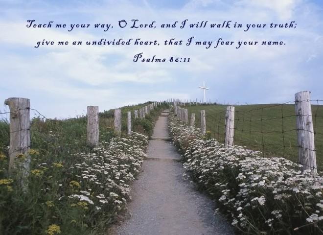 Psalm 86_11