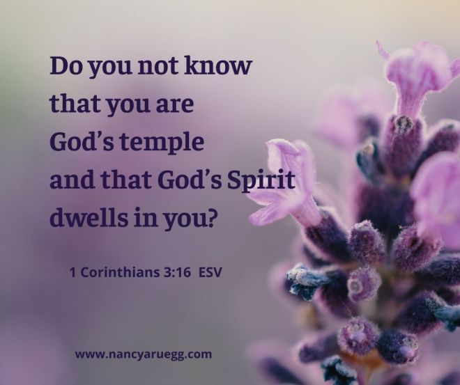 1 Corinthians 3_16