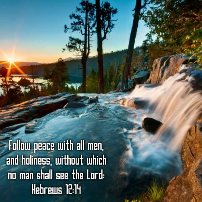 Hebrews 12-14