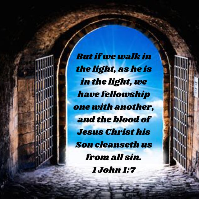 1 John 1-7