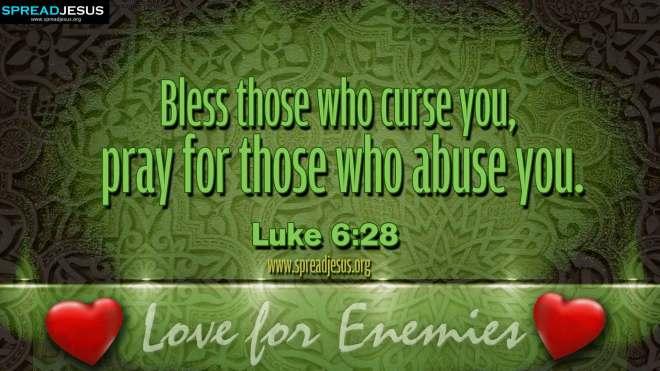 Luke 6_28